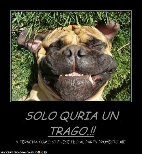 SOLO QURIA UN TRAGO.!! Y TERMINA COMO SI FUESE IDO AL PARTY PROYECTO X!!I