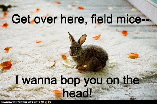 bunny,field mice,get over here,head,lazy,little bunny foo-foo,song