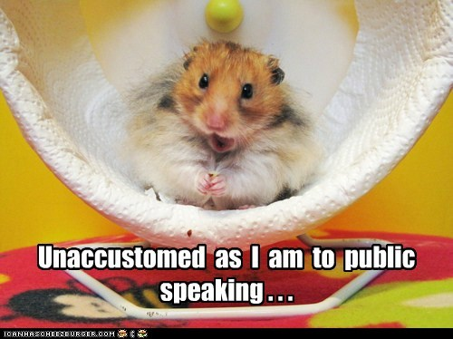 hamster hamster wheel public speaking speech talking