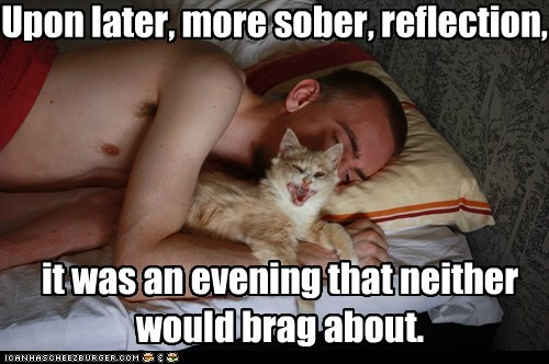 bed captions Cats sexy sleep sober walk of shame - 6532065024