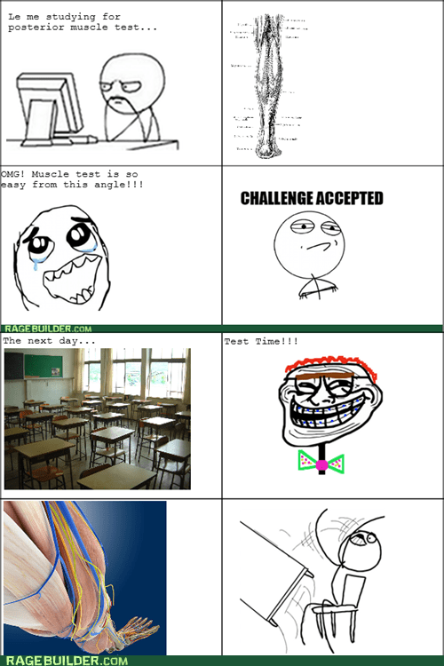 studying Challenge Accepted test computer guy table flipping - 6532179968