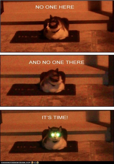 captions Cats creepy eyes its-time laser eyes lasers multipanel robots - 6532261632
