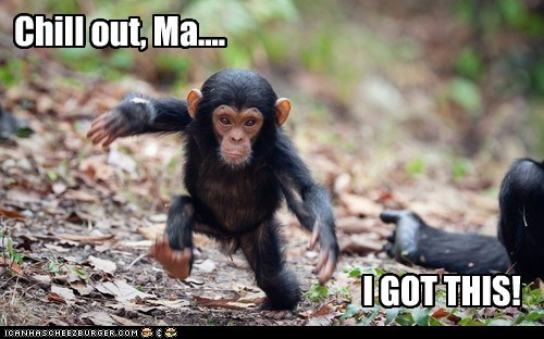 baby,captions,chill out,chimpanzee,i got this,kid,mom