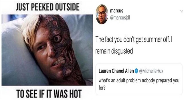 perfect summer memes that will not cool you off in this heat, but might help you forget about the humidity