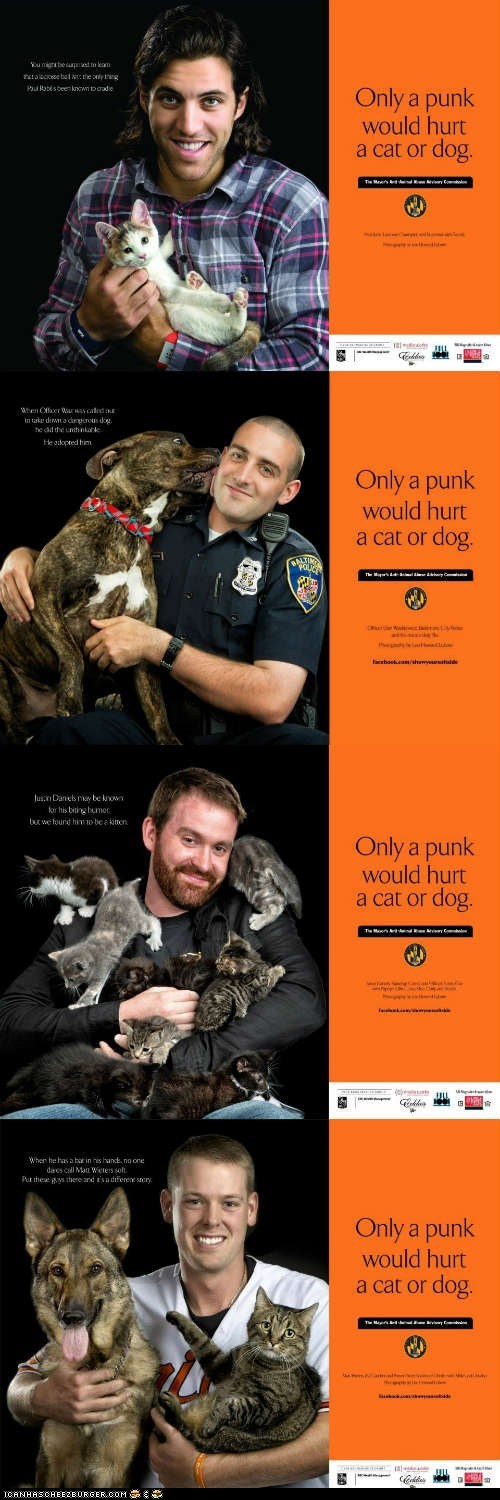 ad campaigns Animal Abuse baltimore Cats dogs show your soft side tough guys win