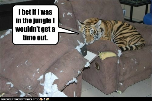 I bet if I was in the jungle I wouldn't get a time out.