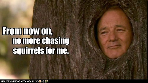 actor,bill murray,celeb,funny
