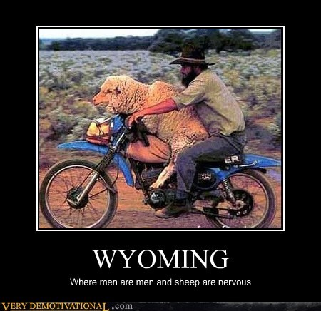 men,nervous,women,Wyoming