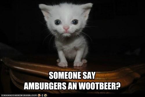 Cheezburger Image 6534251264