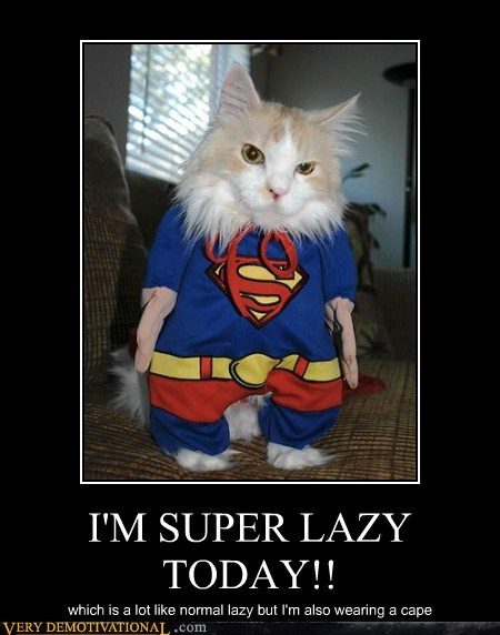 cape cat lazy Super