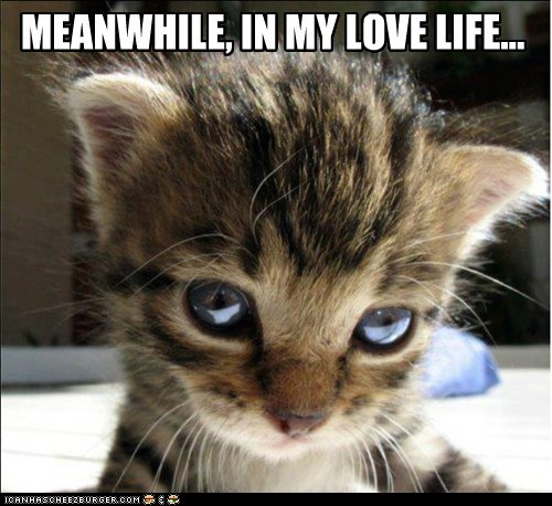 alone captions Cats forever alone love Sad womp womp