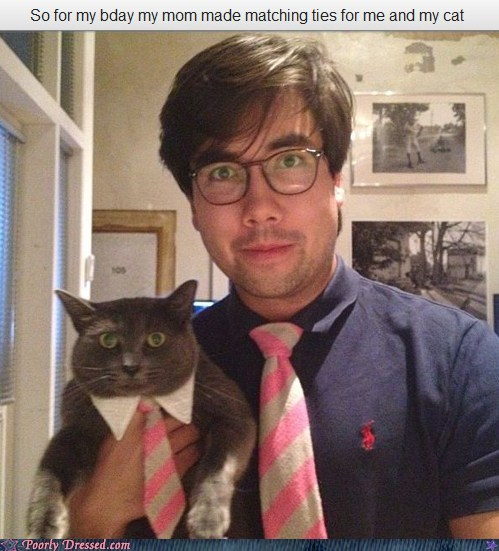 Cats,neck tie,same outfit