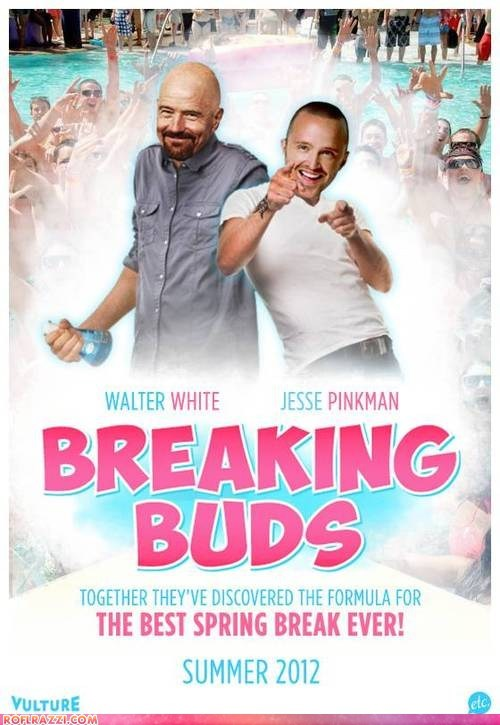 aaron paul actor amc breaking bad bryan cranston celeb funny Movie poster shoop TV - 6535219712
