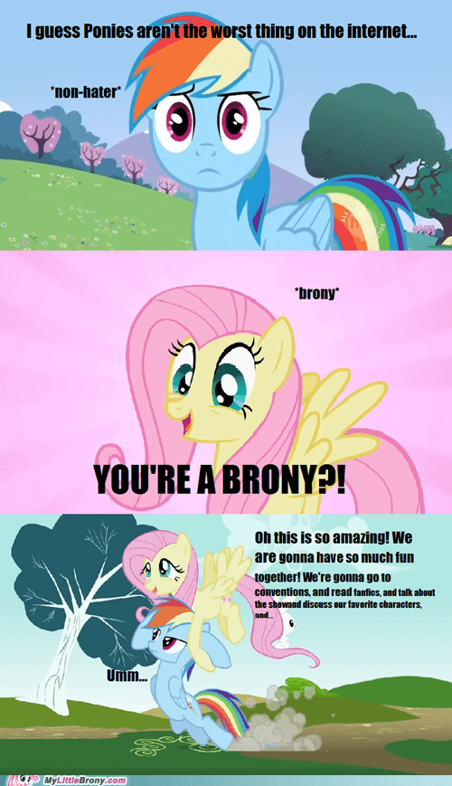 Bronies Fun Fun Fun haters lets-ship together forever