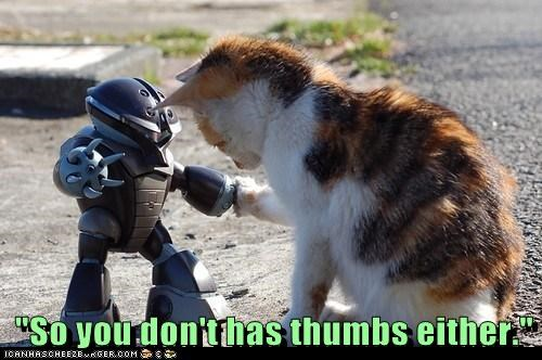 captions,Cats,friend,robot,thumb