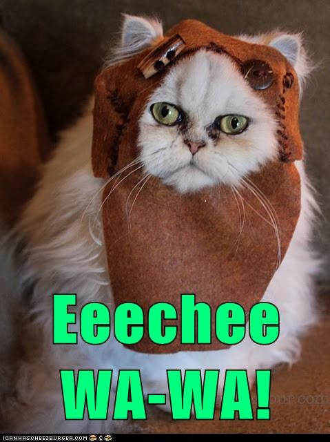 captions Cats ewok Movie reference star wars - 6535611648