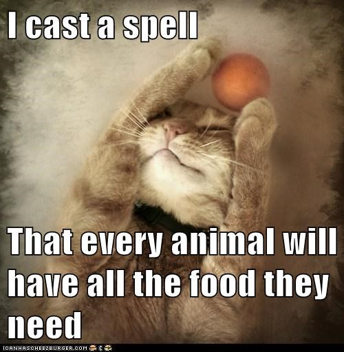 I cast a spell  That every animal will have all the food they need