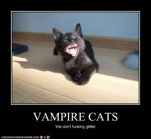 VAMPIRE CATS We don't fucking glitter