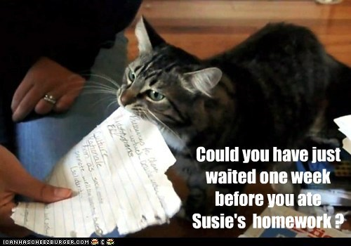 Could you have just waited one week before you ate Susie's homework ?
