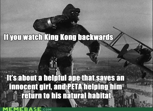 backwards movie king kong peta - 6536016896