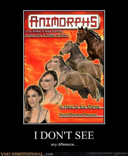 animorphs,horse,sarah jessica parker