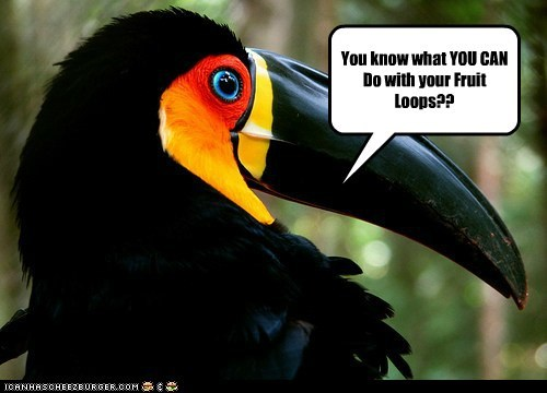 fruit loops shove it suggestion threat toucan - 6536360960