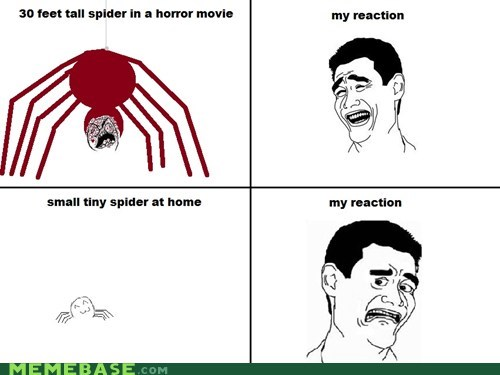 f that,movies,spiders