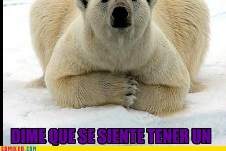 Cheezburger Image 6536997376