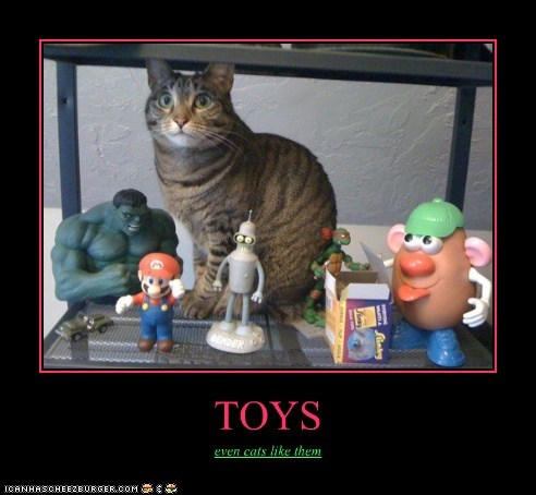 Cheezburger Image 6537295360
