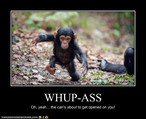 baby chimpanzee running threat whoop ass you