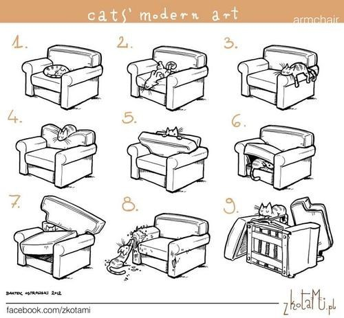 annoying,art,Cats,chairs,destruction,illustrations,modern art
