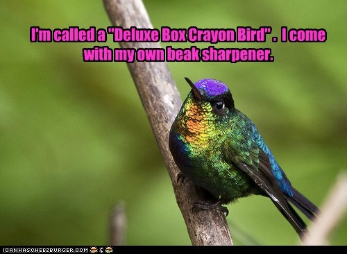 beak,crayons,deluxe,hummingbird,rainbow,sharpener