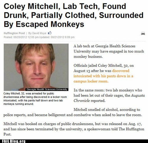 after 12 drunk monkey Party Probably bad News - 6537937920