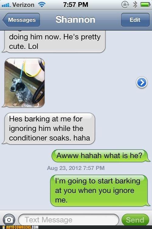 barking dogs - 6538045440