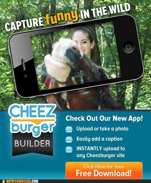 Cheezburger Image 6538052352