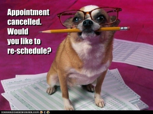 Appointment cancelled. Would you like to re-schedule?