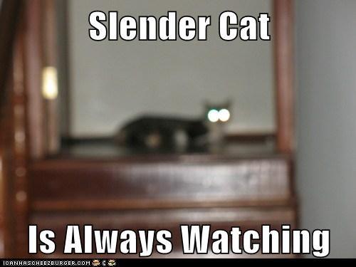 captions Cats creepy creepypasta slender man - 6538648832