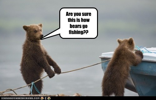Are you sure this is how bears go fishing??