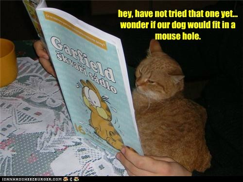 hey, have not tried that one yet... wonder if our dog would fit in a mouse hole.