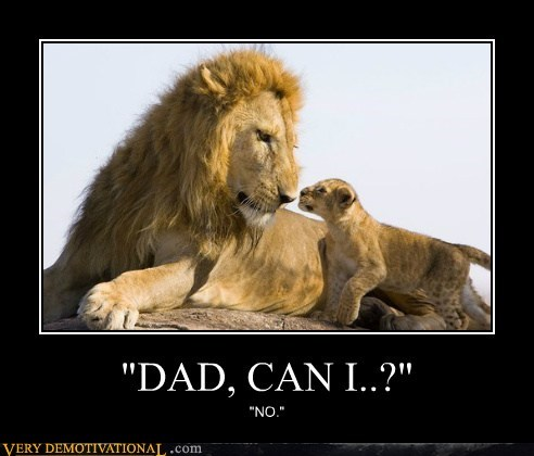 dad denial kid lion parent