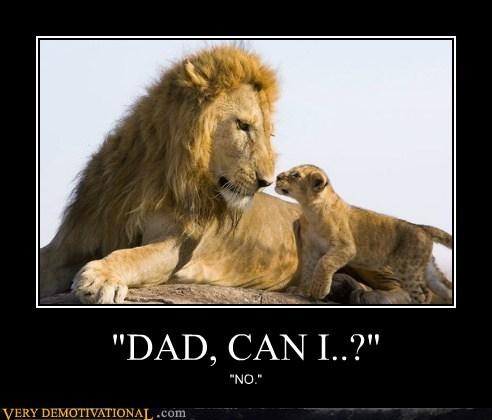 dad denial kid lion parent - 6539237376