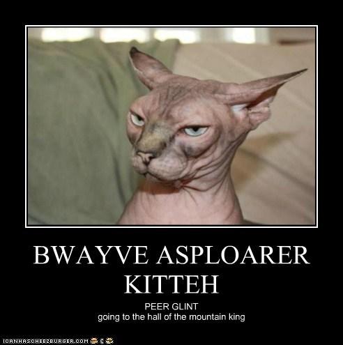 BWAYVE ASPLOARER KITTEH