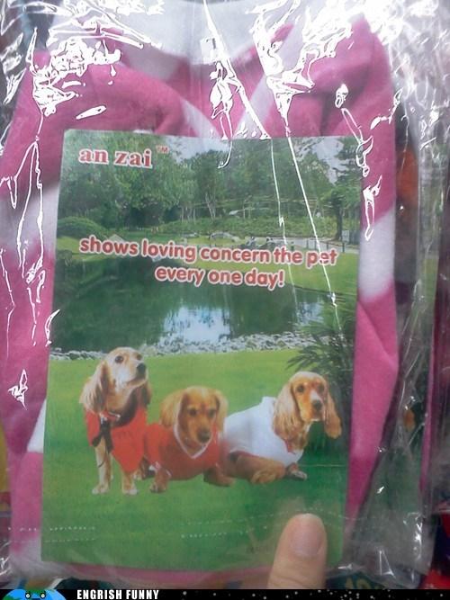 dogs doggies fleece pet photoshop sweater - 6539881216