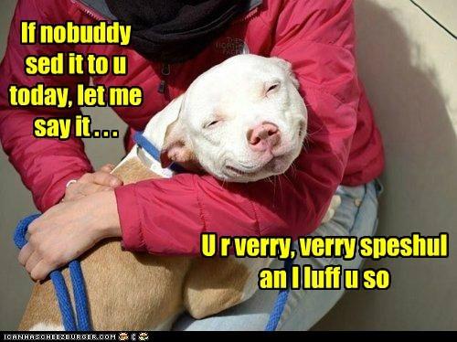 awww captions hug love pitbull special - 6541778432