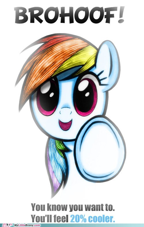 brohoof,I MISSED YOU GUYS,mod is back in business,rainbow dash,the internets,twenty percent cooler