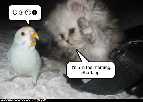 It's 5 in the morning. Shaddup! R{J|