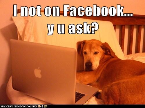 I not on Facebook...     y u ask?