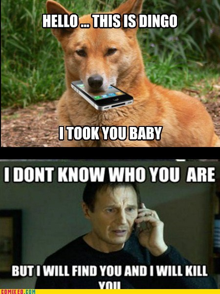dingo ate your baby,hello this is,i will kill you,taken