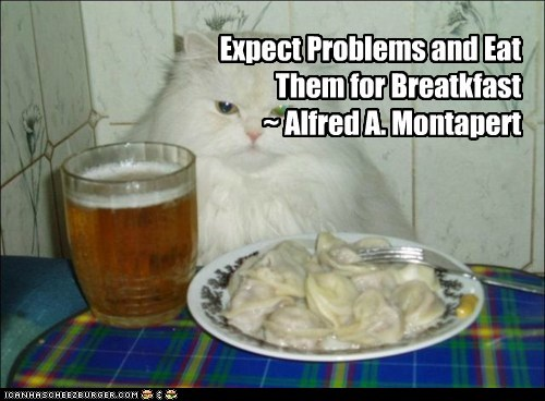Expect Problems and Eat Them for Breatkfast ~ Alfred A. Montapert