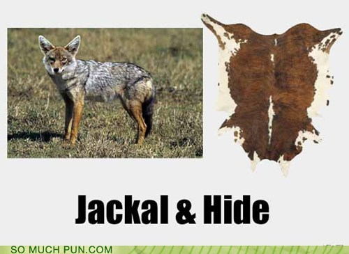 hide hyde jackal jekyl similar sounding - 6543110656